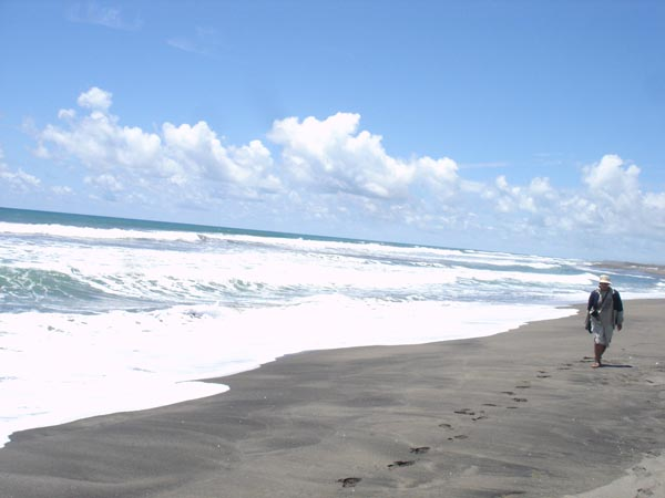 Berjalan di Tepi Pantai